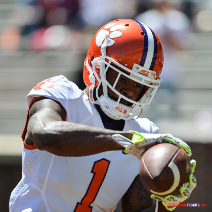 Young WRs Shine in Spring Game