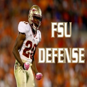What About Florida State Seminoles Defense