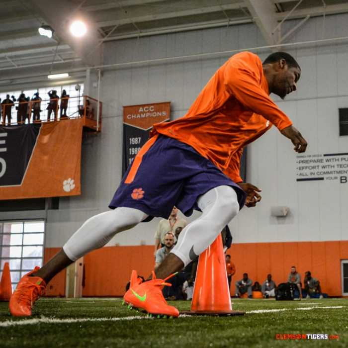 Tigers Shine at Pro Timing Day